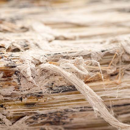Asbestos inspections, certifications and monitoring